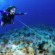 mergulho voo debaixo de água